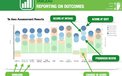 Measuring Client Outcomes with an Integrated Case Management System